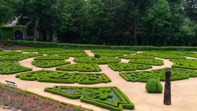 Jardim Novo da Mata do Buçaco.
