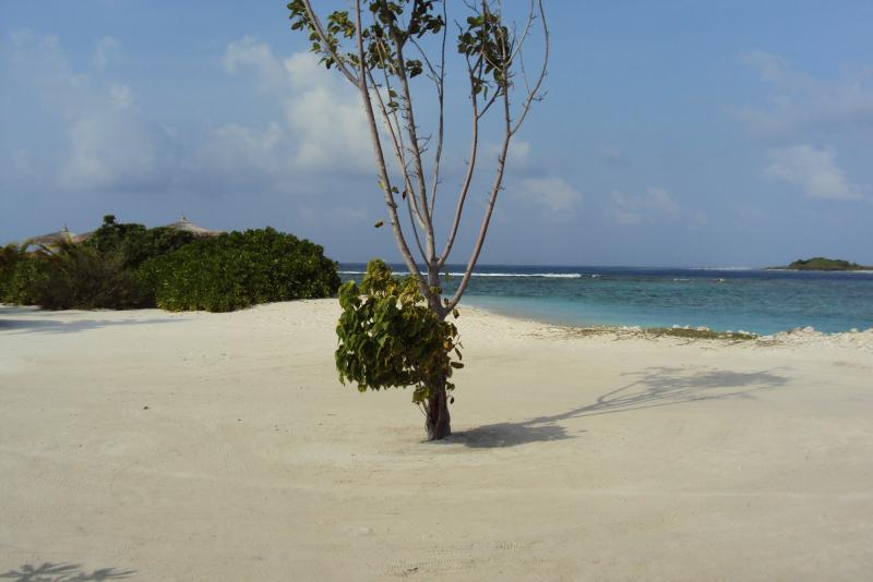 Areal nas Maldivas