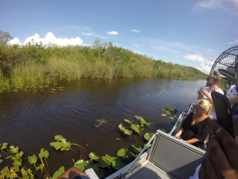 Visitar The Everglades National Park em Miami