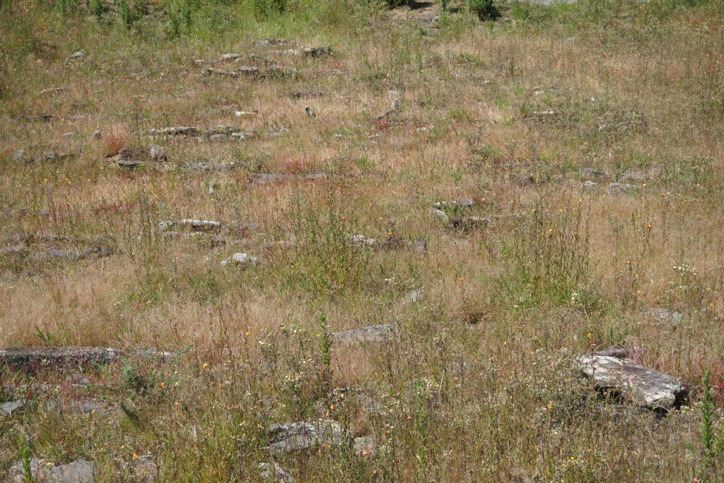 Cemitério Medieval de Barreiras
