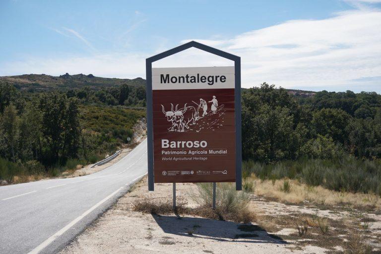 Visitar Montalegre